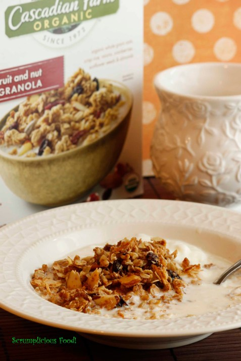 Homemade Muesli vs Granola